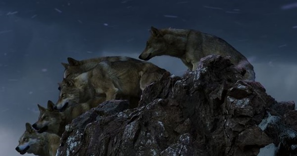 totem-vlka 2